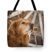 Enjoying The Moment - Golden Retriever - Casper Wyoming Tote Bag