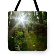 Enlightenment From The Angels  Tote Bag