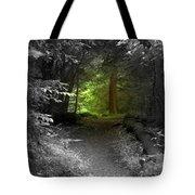 Enter Oz Tote Bag