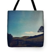 Entrances Tote Bag