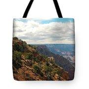 Environment Of The Canyon Tote Bag