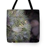 Epiphyte Globe Tote Bag