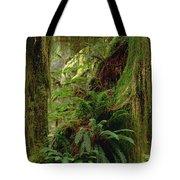 Epiphytic Sword Fern Tote Bag