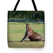 Equestrian Beauty Tote Bag