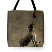 Equilibrium Tote Bag by Cynthia Decker