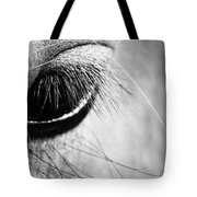 Equine Eye Tote Bag