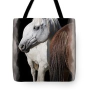 Equine Horse Head And Tail Tote Bag by Daniel Hagerman