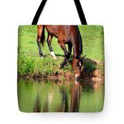 Equine Reflections Tote Bag
