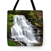 Erie Falls Tote Bag