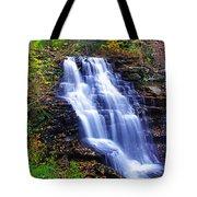 Erie Falls Vertical Panoramic Tote Bag