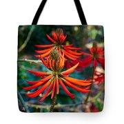 Erythrina Speciosa Tote Bag