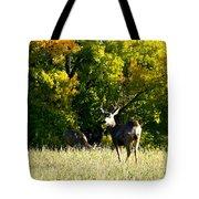 Escape Into The Trees Tote Bag