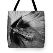 Essence Black And White Tote Bag