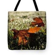 Essence Of Autumn Tote Bag
