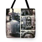Essence Of Savannah Tote Bag