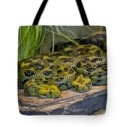 Ethiopian Mountain Vipers Tote Bag