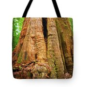 Eucalyptus Tree Tasmania Tote Bag