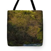 Eume River Galicia Spain Tote Bag