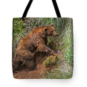 Eurasian Brown Bear 21 Tote Bag