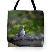 Eurasian Collared Dove Tote Bag