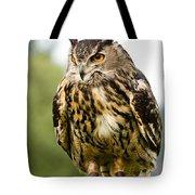 Eurasian Eagle Owl On Log Tote Bag