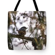 Eurasian Nuthatch Tote Bag