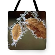 European Beech Leaves With Frost Tote Bag