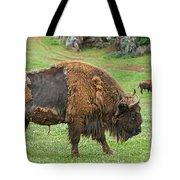 European Bison 4 Tote Bag