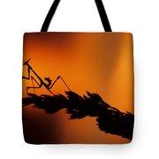 European Devil Mantis Tote Bag