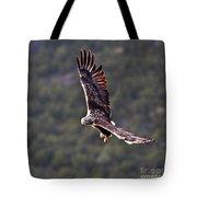 European Flying Sea Eagle 4 Tote Bag