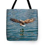 European Flying Sea Eagle 6 Tote Bag