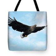 European Flying Sea Eagle 7 Tote Bag