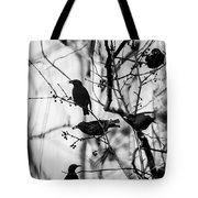 European Starlings Tote Bag