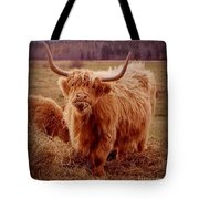 Even Cape Breton Cattle Have Character Tote Bag