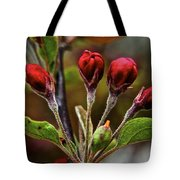 Evening Beauty Tote Bag