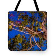 Evening Blues Tote Bag