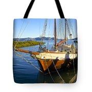 Evening Calm In Coromandel Tote Bag