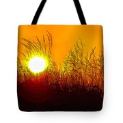 Evening Dunes Tote Bag