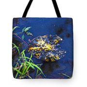 Evening Encloses The Aging Lily Pad Tote Bag