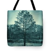 Evening Falls Tote Bag