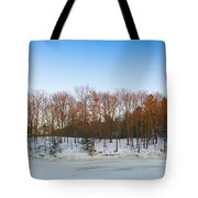 Evening Light On The Trees Tote Bag
