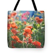 Evening Lights The Poppies Tote Bag