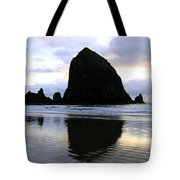 Evening Luster Tote Bag by Will Borden