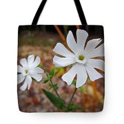 Evening Lychnis Tote Bag