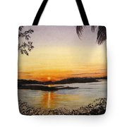 Evening Marsh Tote Bag