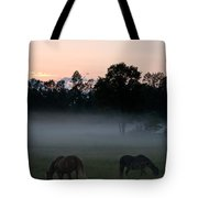 Evening Mist Tote Bag