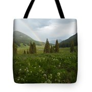 Evening Rainbow In The Rocky Mountains Tote Bag