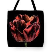 Evening Red Tote Bag