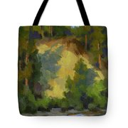 Evening Shadows Teanaway River Tote Bag