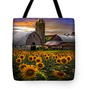 Evening Sunflowers Tote Bag